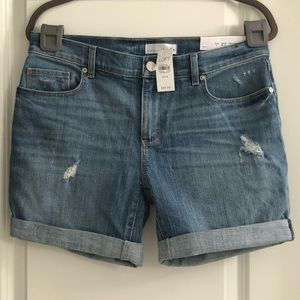 Ann Taylor LOFT Jean Shorts Relaxed Roll